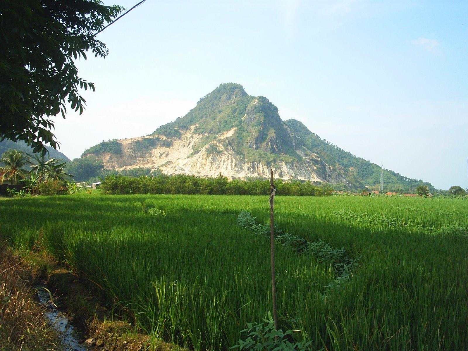 foto pemandangan alam kpaimin